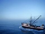 Shrimp Boat in the Gulf of Mexico Fotografisk tryk af Kenneth Garrett