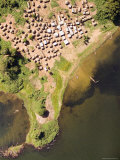 This Nice Little Village is Found Along the Banks of Lake Victoria, Uganda Photographic Print by Michael Fay