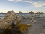 Tofa Formations on the Shore of Mono Lake, California Photographic Print by Bill Hatcher