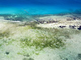 The Crystal Blue Water and Shallow Reefs of the Pemba Channel Photographic Print by Michael Fay
