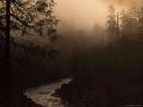 South Fork of Smith River at Sunrise, California Photographic Print by Phil Schermeister