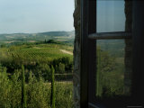 Vineyards of Chianti Viewed Through and Reflected Upon an Open Window, Tuscany, Italy Fotografisk tryk af Todd Gipstein