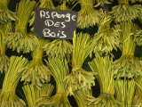 Wild Aspargus for Sale in Market, Paris, France Fotografisk tryk af Brimberg & Coulson