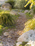 Stone Path Through Garden, Santa Barbara, California Photographic Print by James Forte