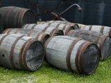 Wooden Barrels on the Ground, Mystic, Connecticut Photographic Print by Todd Gipstein
