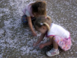 Sisters Play with Cherry Blossom Petals, Washington, D.C. Photographic Print by Stacy Gold