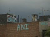 Top of a New York Building with Graffiti Photographic Print by Todd Gipstein