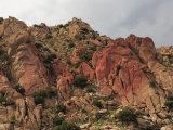 Scenic Roadside, Arizona Photographic Print by George Grall