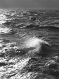 Storm Waves, South Ocean, Drakes Passage, Antarctica Photographic Print by Ralph Lee Hopkins