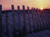 Wooden Erosion Fence Photographic Print by Stacy Gold