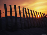 Wooden Fence on a Sand Dune Photographic Print by Stacy Gold