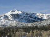 Snow Covered Trees and Mountain on a Bluebird Day, California Photographic Print by James Forte