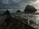 The Wreck of the Thomas T. Tucker on Olifantsbos Point, South Africa Fotografisk tryk af James L. Stanfield