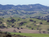 Scenic Landscape of Oak Woodland Habitat, California Photographic Print by Rich Reid