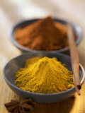 Turmeric and Curry Photographic Print