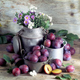 Still Life with Fresh Plums in and in Front of Pots & Pans Photographic Print