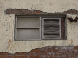 Window and Brick Wall with Peeling Plaster, Brooklyn, New York Fotografisk tryk af Todd Gipstein