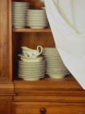 Crockery in Kitchen Cupboard Photographic Print by Jean Cazals