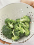 Freshly Washed Broccoli Florets in Sieve Photographic Print by William Lingwood