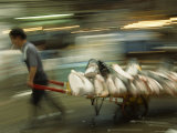 Worker Quickly Wheels a Handcart Loaded with Slabs of Tuna, Tsukiji Fish Market, Japan Photographic Print by James L. Stanfield