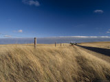 Windblown Grass Plains and an Empty Country Road Beckon Exploring, Australia Photographic Print by Jason Edwards