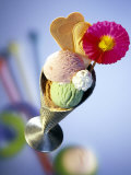 Strawberry, Pistachio & Chocolate Ice Cream, Cream & Wafers Photographic Print by Martina Urban