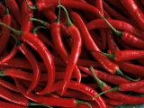 Thai Chili Peppers Photographic Print
