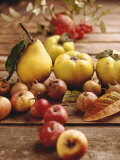 Autumn Fruits: Quinces, Medlars, Rowan Berries, Apples & Pears Photographic Print by Luzia Ellert
