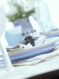 Place Setting with Blue and White Plates Photographic Print by Ian Garlick