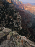 View Off of the North Rim of the Grand Canyon Photographic Print by Bill Hatcher