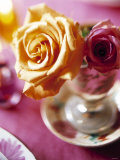 Yellow and Red Rose in a Glass as Table Decoration Fotografie-Druck von Alexander Van Berge