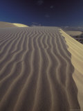 Wind Blown Sand Ripples Across a Golden Sand Dune Crest at Sunset, Australia Photographic Print by Jason Edwards