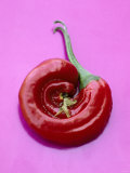 Chili Pepper, Round Photographic Print by Marc O. Finley