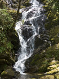 Waterfall in Shennongjia Forest, Hubei Province, China Photographic Print by David Evans