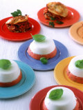 Tomato & Sheep Cheese Mousse & Vegetable Lasagne, Party Buffet Photographic Print by Jörn Rynio