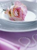 Rose on a Plate as Table Decoration Photographic Print by Alena Hrbkova