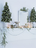 Window Sill Decorated for Christmas Photographic Print by Miki Duisterhof