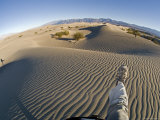 Walking in the Sand at the Sand Dunes near Stovepipe Wells, California Photographic Print by Rich Reid