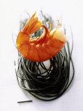 Shrimps with Black Pasta Fotografisk tryk af Marc O. Finley
