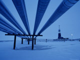 View Underneath Alaska Pipeline Photographic Print by Kenneth Garrett