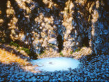 Grotto Made of Shells and Vegetables Photographic Print by Hartmut Seehuber