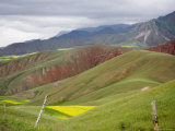Wheat and Rapeseed Fields in a Mountainous Landscape, Qinghai, China Photographic Print by David Evans