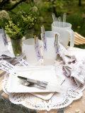 White Table Decoration for a Spring Party or Picnic Photographic Print by Roland Krieg
