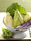 Various Types of Cabbage in a Strainer Photographic Print by Joff Lee