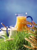 Healthy Ingredients (Quark, Milk, Juice, Cereals) on Grass Fotografie-Druck