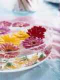 A Bowl of Flowers Floating in Water (Table Decoration) Fotografie-Druck von Alexander Van Berge
