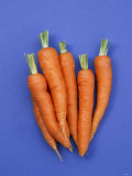 Carrots Photographic Print by Barbara Bonisolli