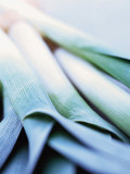 Leek Stalks Photographic Print by Steve Baxter