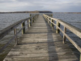 Weathered Pier Leads to the Chesapeake Bay Fotografisk tryk af Stephen St. John