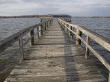 Stephen St. John - Weathered Pier Leads to the Chesapeake Bay Fotografická reprodukce